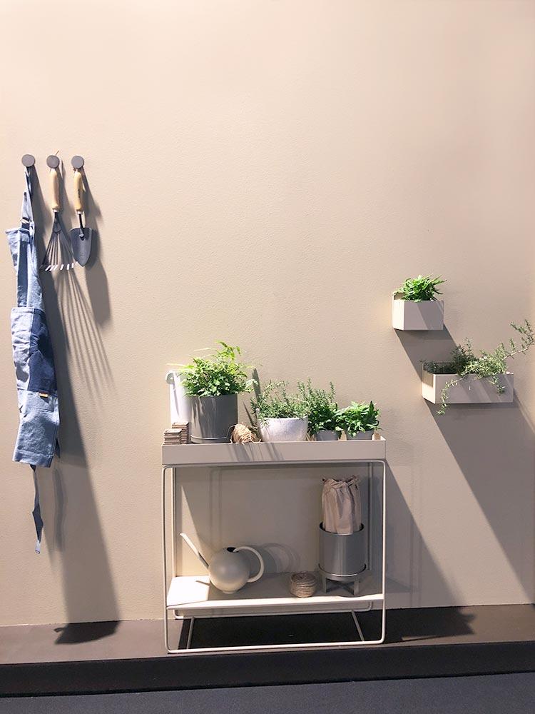 Beige Wände und Möbel mit kleinen Grünpflanzen in Töpfen