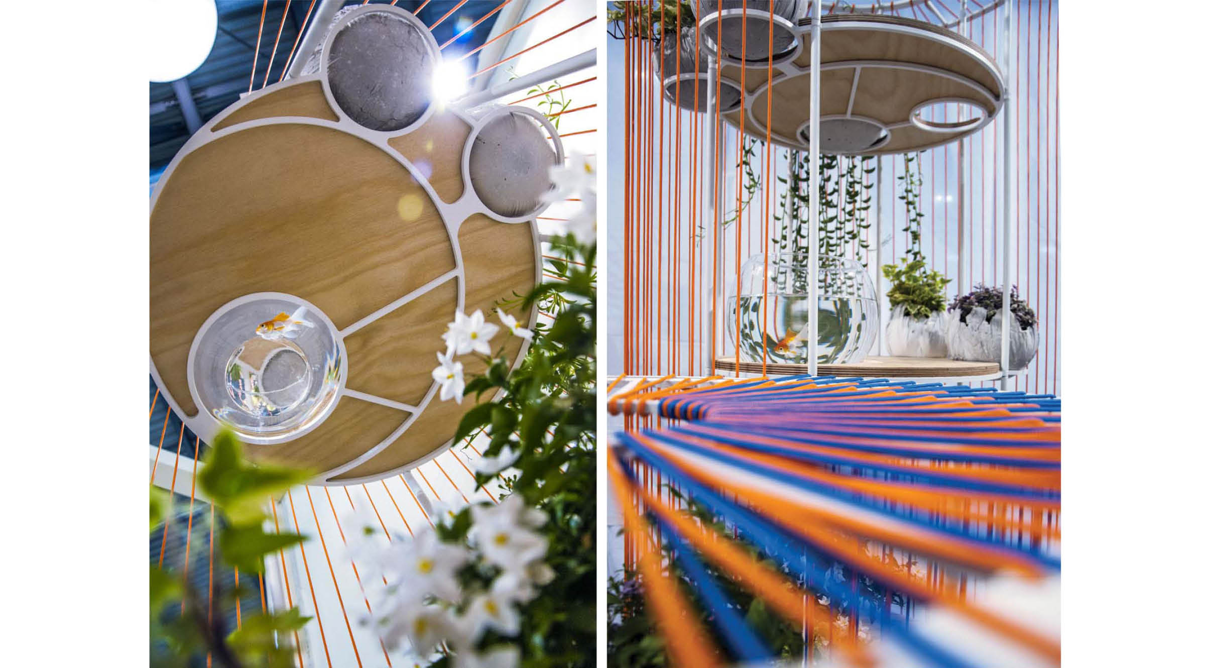 Bolina ist Kunstobjekt und Garten zugleich